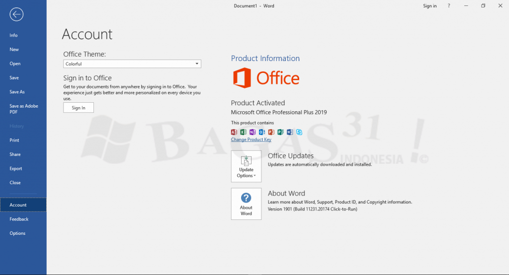 microsoft-office-pro-plus-2019-update-februari-2019_1_wm-1024x554-7709520-5585926