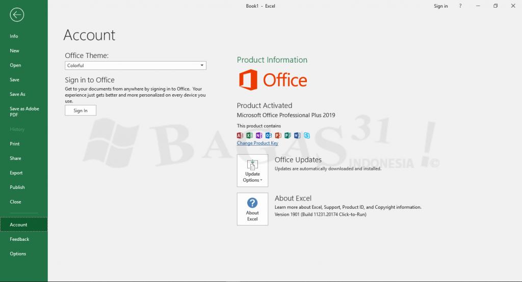 microsoft-office-pro-plus-2019-update-februari-2019_2_wm-1024x554-6237277-5896281